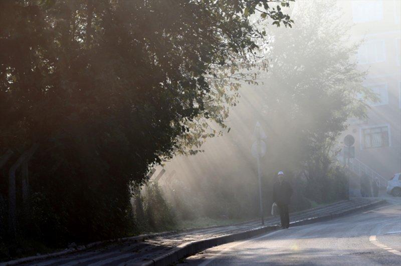 İstanbul'da sis etkili oldu 9