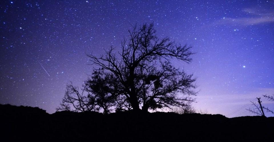 Geminid meteor yağmuru büyüledi 8