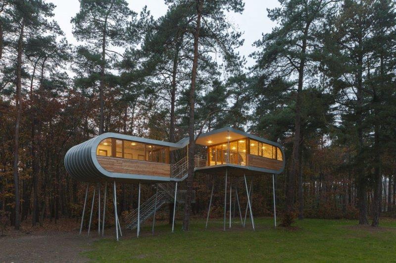Orman içerisinde modern ve konforlu bir ev 2
