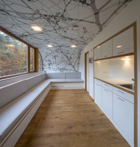 Orman içerisinde modern ve konforlu bir ev 4