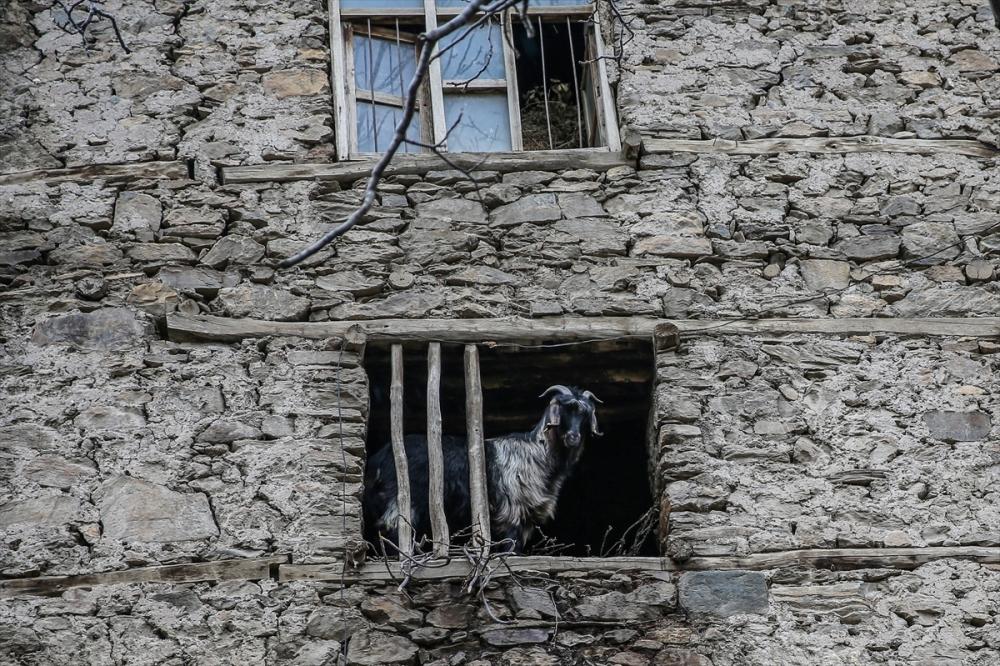 Hizan'ın taş evleri 21