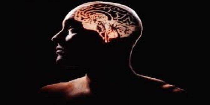 Beynimizdeki Editör
