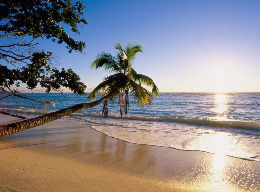 Yeryüzü cenneti Hawaii 1