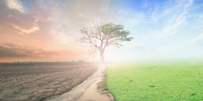 Küresel ısınma 6 bin 500 yıllık soğumayı tersine çevirdi