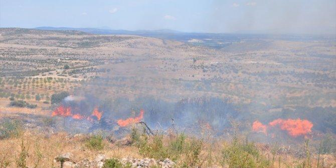Çanakkale'de örtü yangınında 5 dönüm alan zarar gördü