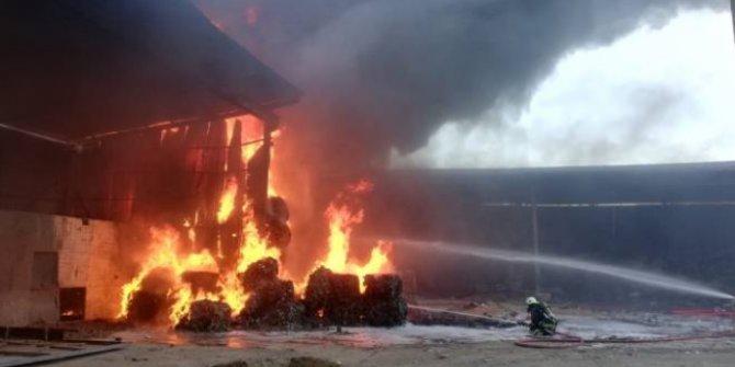 Kereste fabrikasında büyük yangın