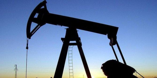 OPEC: Petrol piyasasında hafif bir toparlanma görülecek