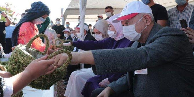 Koronavirüsü atlatan Binali Yıldırım ve eşi Şanlıurfa'da fıstık hasadına katıldı