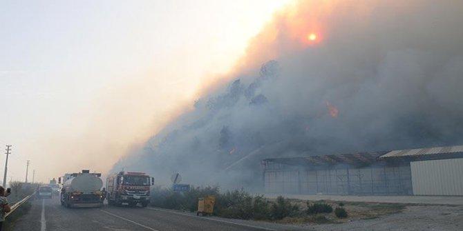 50 ev tahliye edildi! Aydın'da korkutan yangın