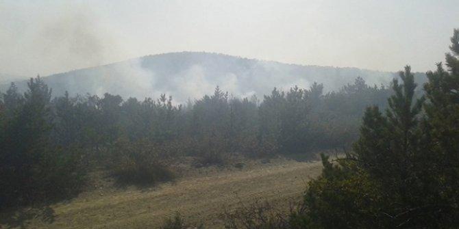 Tokat'ta orman yangını: 4 noktada sürüyor