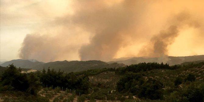 Suriye'deki orman yangınları sürüyor