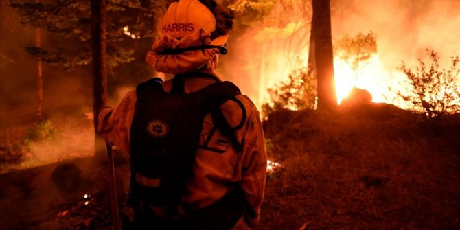 ABD'de etkili olan Delta Kasırgası'nın yol açtığı yangınlarda 2 kişi öldü