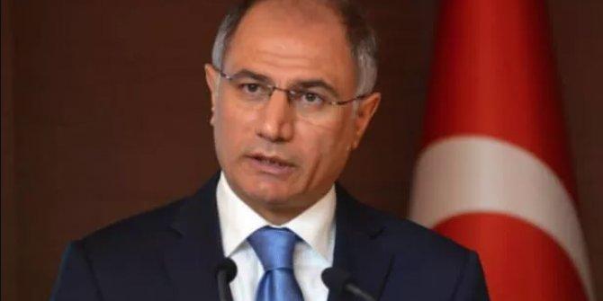 Efkan Ala'dan CHP'li Çeviköz'ün demokrasi açıklamasına tepki