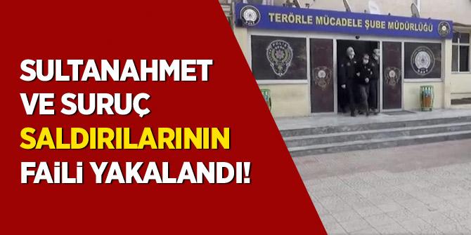 Sultanahmet ve Suruç saldırılarının faili yakalandı!