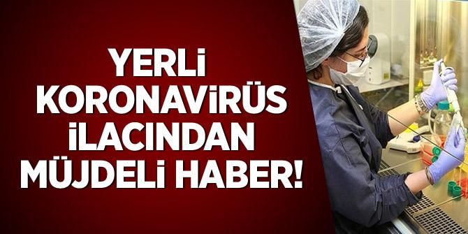 Yerli koronavirüs ilacında müjdeli haber