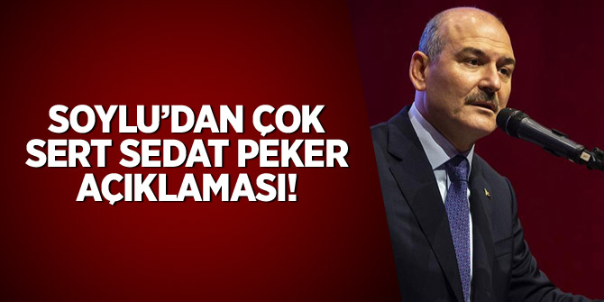 Soylu'dan çok sert 'Sedat Peker' açıklaması