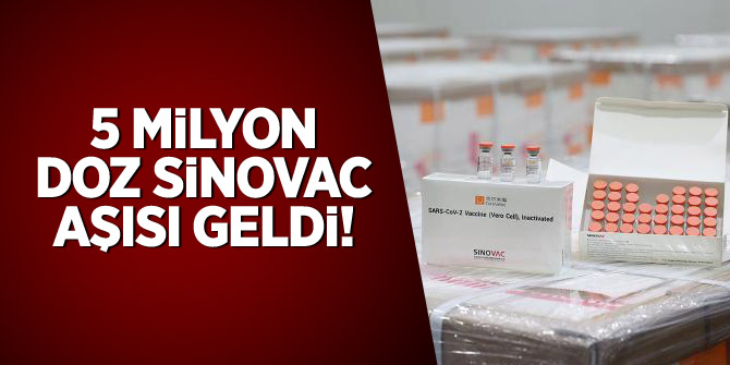 5 milyon doz Sinovac aşısı geldi