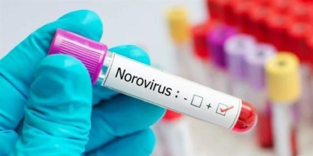 Yeni tehlike norovirüs: Bu belirtilere dikkat!