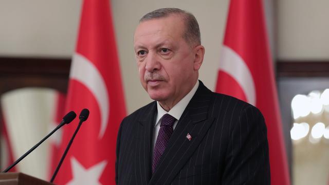 Erdoğan'dan, mücadeleye destek veren ülkelere teşekkür