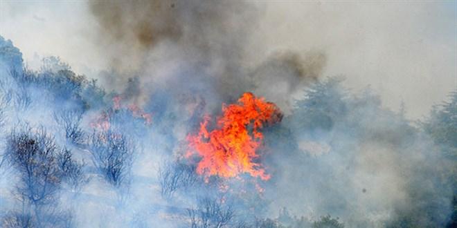 79 yangından 66'sı kontrol altına alındı