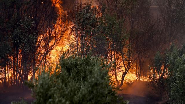 Manavgat'tan acı haber: Can kaybı 7'ye yükseldi