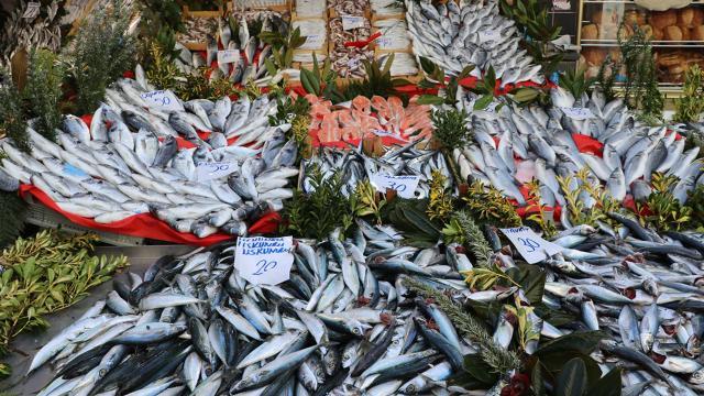 Balık bolluğu fiyatlara da yansıdı: İşte tezgahlardaki son durum...