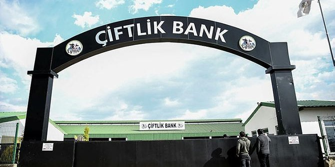 Kırmızı bültenle aranan Çiftlik Bank şüphelisi tutuklandı