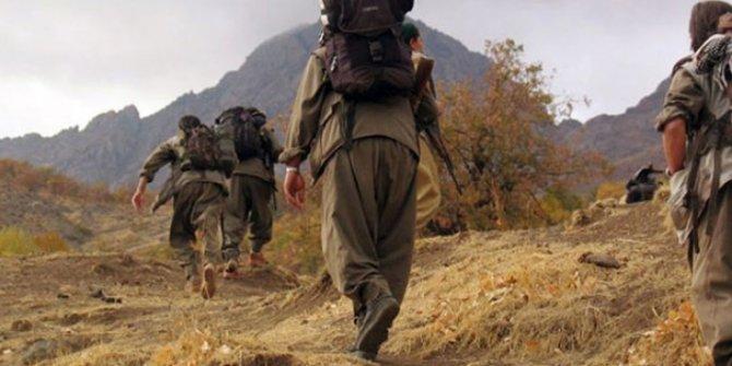 Kırmızı bültenle aranan terörist Siirt'te yakalandı