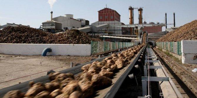 Rekabet'ten 5 şeker fabrikasının satışına onay