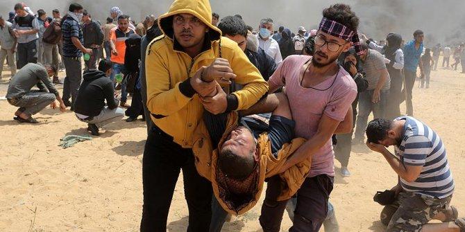 54 Filistinli bitkisel hayatta!
