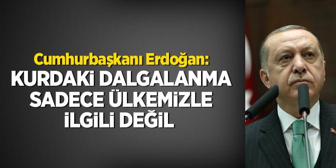 Cumhurbaşkanı Erdoğan: Kurdaki dalgalanma sadece ülkemizle ilgili değil