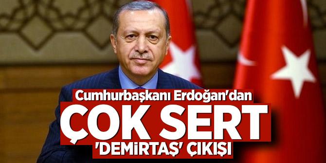 Cumhurbaşkanı Erdoğan'dan çok sert 'Demirtaş' çıkışı