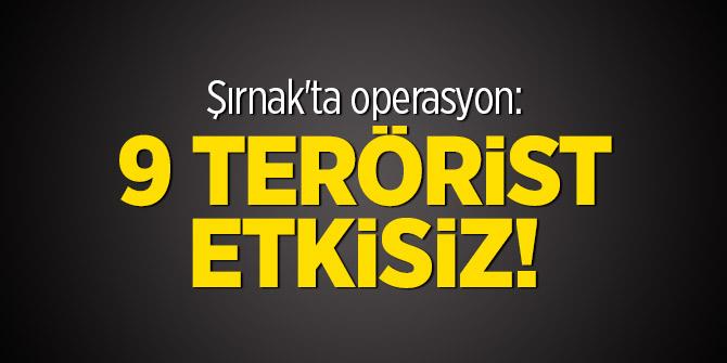 Şırnak'ta operasyon: 9 terörist etkisiz!