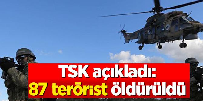TSK açıkladı: Şırnak ile Irak'ın kuzeyinde 87 terörist öldürüldü