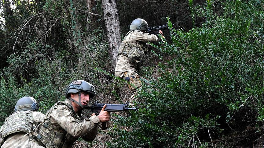 Bitlis'te 5 teörist öldürüldü