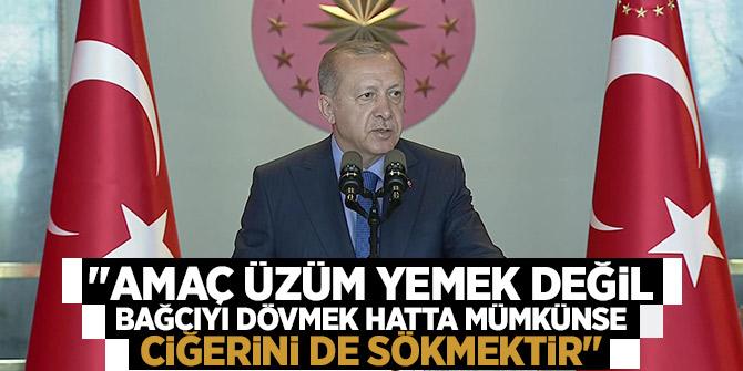 """Erdoğan: """"Amaç üzüm yemek değil bağcıyı dövmek hatta mümkünse ciğerini de sökmektir"""""""