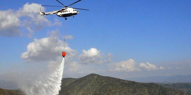 Zonguldak'ta orman yangını!