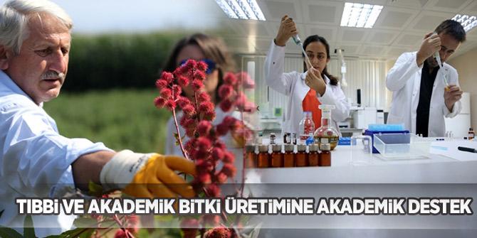 """Tarladan laboratuvara"" sloganıyla tıbbi ve akademik bitki üretimine akademik destek"