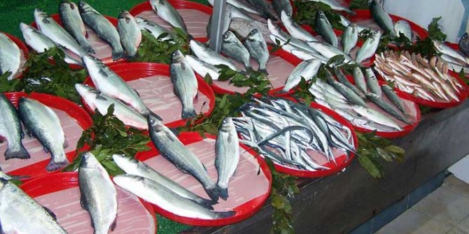 Karadeniz'de  hava balık fiyatlarını yükseltti!