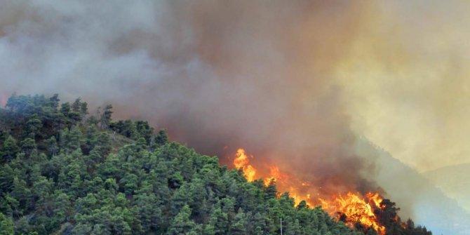 Mersin'de ormanlık alanda yangın