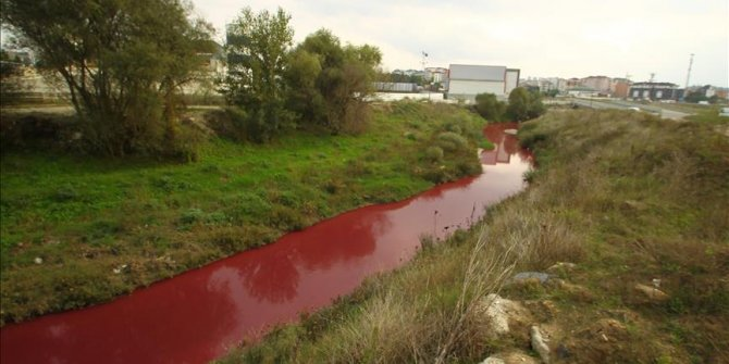 Nehri kirleten işletmenin faaliyeti durduruldu