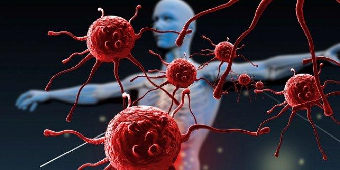 Hücre ve protein ağı: Bağışıklık sistemi! Peki, bağışıklık sistemi nasıl güçlenir?
