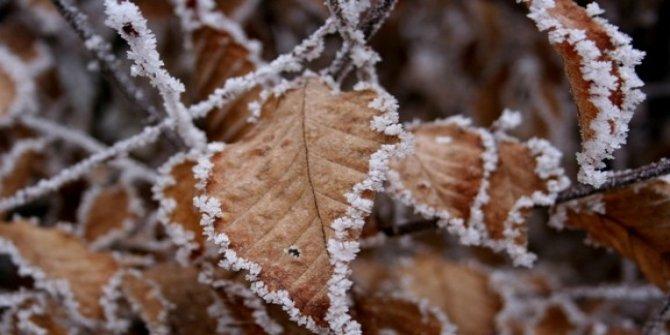 Doğu Anadolu'ya buzlanma ve don uyarısı
