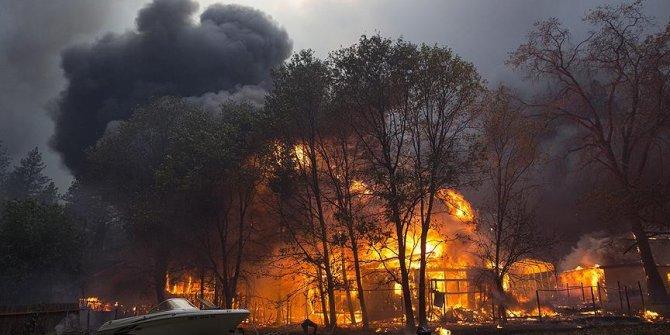 California'da orman yangını!