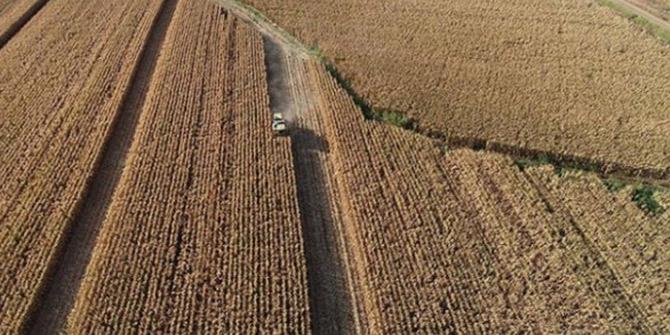 Çiftçilere Tarım ve Orman Bakanı'ndan duyuru!