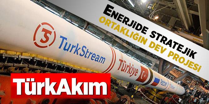 Enerjide stratejik ortaklığın dev projesi: TürkAkım
