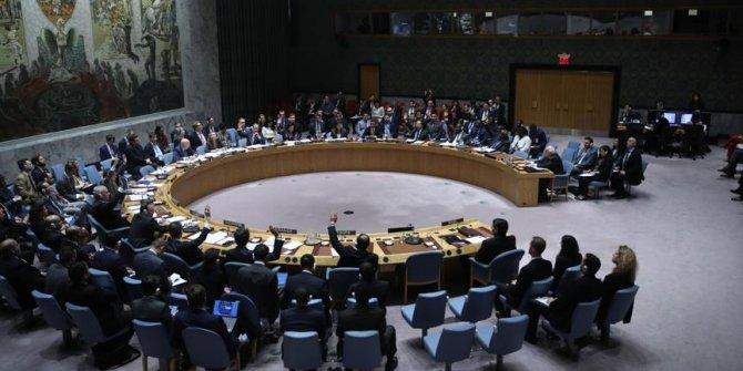 Yemen'de ateşkes talep eden tasarı BM Güvenlik Konseyine sunuldu