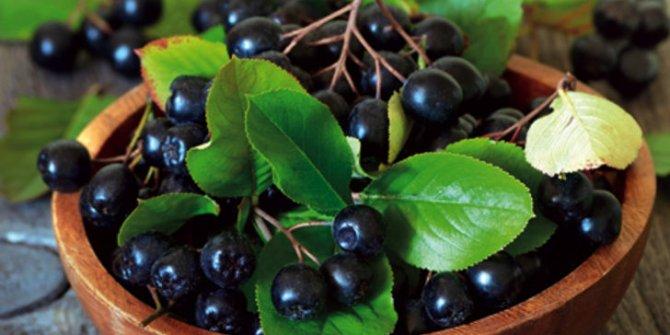 'Süper meyve' olarak nitelendirilen Aronia nedir, faydaları neler?