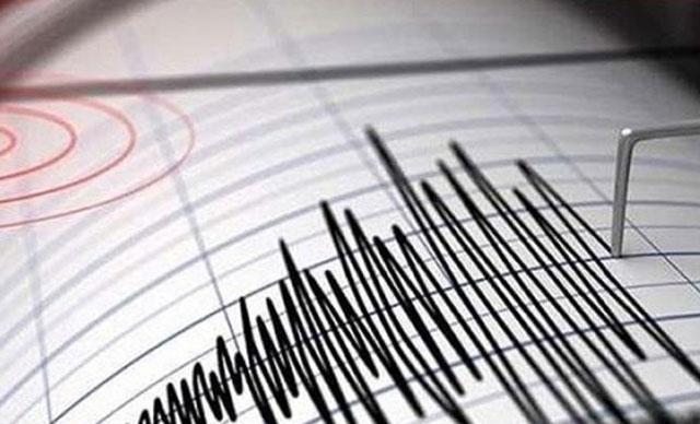 Van'ın Saray İlçesi'nde korkutan deprem!