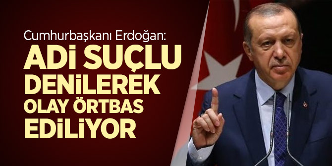 Cumhurbaşkanı Erdoğan: Adi suçlu denilerek olay örtbas ediliyor